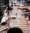 Jonestown Guyana, Nov. 18, 1978