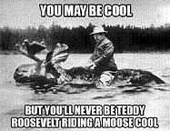 Teddy Roosevelt Riding a Bull Moose