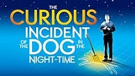 'The Curious Incident of the Dog in the Night-Time', 2012