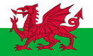 Welsh Dragon, 655